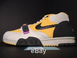2007 Nike Dunk Sb Air Trainer 1 Tech Pack Grey Black Gold Leaf Pink Yellow 11