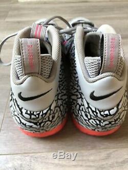 Chaussures Hommes Nike Air Foamposite Pro Avec Imprimé Éléphant Gris / Noir-hyper Pink Us 15